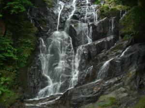 6月13日の白糸の滝