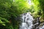 2009_白糸の滝