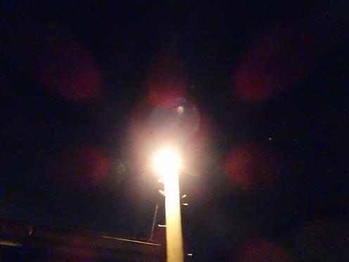 該当の電柱(2月9日午前2時35分撮影)