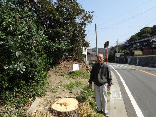 国道沿いの2本の大木が伐採された現場に立つ功労者の大庭さん