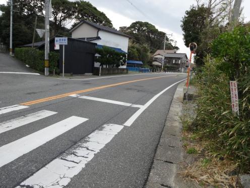 木の繁みで見通しの悪い横断歩道(2月10日撮影)