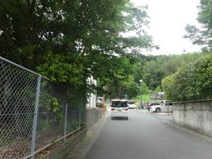 樹木が市道に大きくはみ出している二丈武・迫団地公園(6月7日)