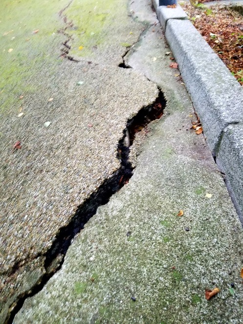 陥没、亀裂が入った歩道
